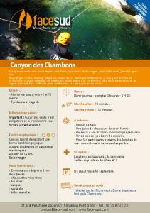 Canyon des Chambons