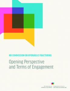 opening perspective and terms of engagement