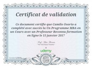 Page 1 Certificat de validation : : Ce document certifie que Camilo ...