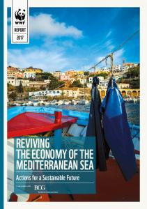 REVIVING THE ECONOMY OF THE MEDITERRANEAN SEA